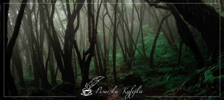 jungle-1-pisarska-kafejka